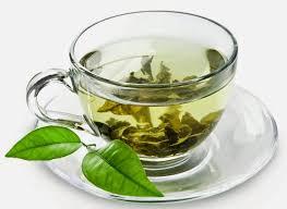 Teh Putih teh putih dan teh hijau education articles