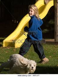 Dog In The Backyard by Young Chasing Pet Dog Stock Photos U0026 Young Chasing Pet