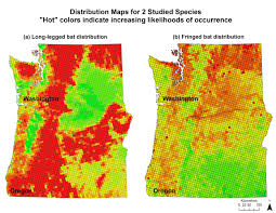 bat maps help conservation in pacific northwest the wildlife society