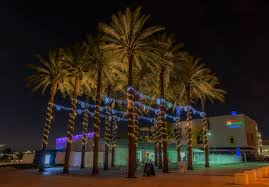 Decorate Palm Trees With Christmas Lights by Palm Tree With Christmas Lights Christmas Lights Decoration
