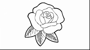 unbelievable rose with thorns coloring page with rose coloring