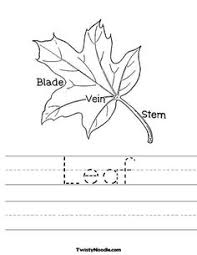 all about trees worksheets earth day and all about earth