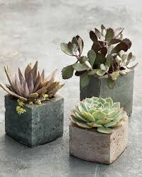 decorative flowerpots and planters martha stewart