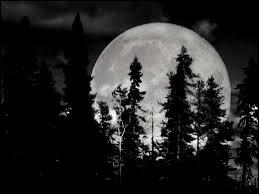 black and white moon 6 background hdblackwallpaper com