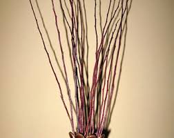 Large Vase With Twigs Decorative Twine Etsy