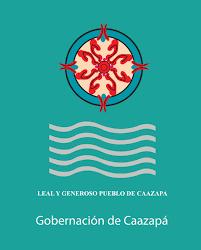 Paraguayan Flag About Us Pro Cosara