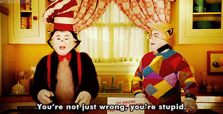 You Re Stupid Meme - you re not just wrong you re stupid cat in the hat know your meme
