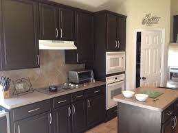 Painting Kitchen Cabinets Ideas Home Renovation Espresso Beans By Behr We Painted Our Lightly Stained Oak