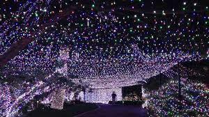 fabulous lights display in australia light