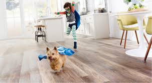 Best Flooring For Pets Best Luxury Vinyl Flooring For Homes With Pets San Diego Pets