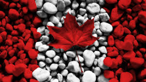 canadian maple leaf free download clip art free clip art on
