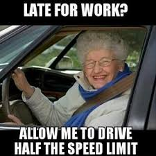 Driving Miss Daisy Meme - 12 best driving miss daisy images on pinterest hilarious