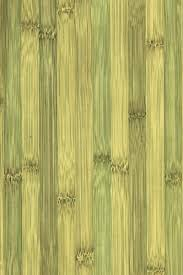 Bamboo Flooring Vs Laminate Incredible Fresh And Juicy Green Bamboo Laminate Flooring