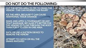 How To Find Snakes In Your Backyard What To Do If You U0027re Bitten By A Snake In Nc Wral Com