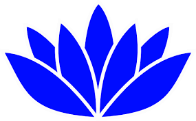 Blue Lotus Flower Meaning - our philosophy u2013 blue lotus psychological services