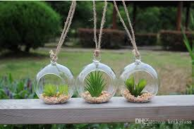 5inch glass globe terrariums hanging planter terrarium kit for