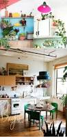 living the trend houseplants for the kitchen u0026 dining room dine