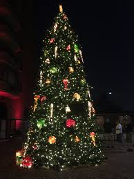 christmas lights direct from china china giant christmas tree for commercial display with full degree