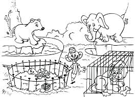 zoo coloring pages preschool zoo coloring pages preschool sheets of animals for animal co