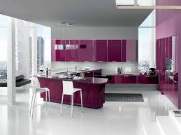 kitchen decorating purple dishes kitchen craft modern kitchen