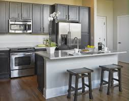kitchen design gallery jacksonville modern condo kitchen design ideas conexaowebmix com