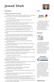 Business Consultant Resume Business Development Consultant Resume Samples Visualcv Resume