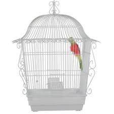 How To Decorate A Birdcage Home Decor Bird Cage Decor 10167