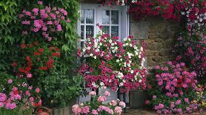 country garden wallpaper 12 renovation ideas enhancedhomes org