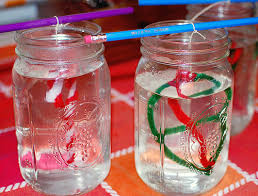 how to make borax ornaments and sun catchers nature