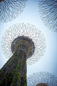 singapore s steel trees green tech on a scale the globe