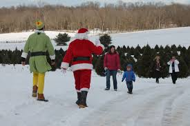 Christmas Tree Farm Va - christmas tree farms clarke county virginia tourism
