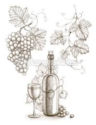 17 best grape reference images on pinterest drawings grape