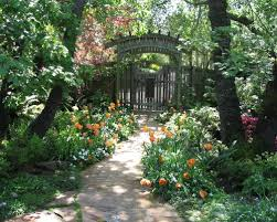 Shady Backyard Landscaping Ideas Hot Partial Shade Garden Houzz In Addition To Magnificent Shady