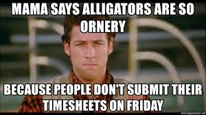 Submit Meme - mama says alligators are so ornery because people don t submit