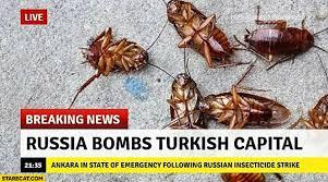 Turkish Meme - cockroach memes starecat com