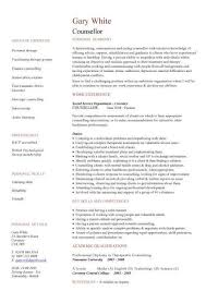 Resume For Admissions Counselor Cheap Papers Writing For Hire For University Writing Essay Tips