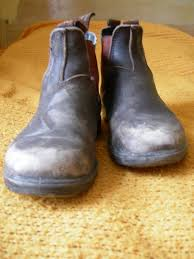 Most Comfortable Mens Boots Best 25 Blundstone Boots Ideas On Pinterest Winter Boots Canada