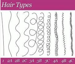 Hair Types by Hair Types Hair