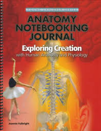 Human Anatomy And Physiology Books Notebooking Journal For Human Anatomy And Physiology Jeannie K