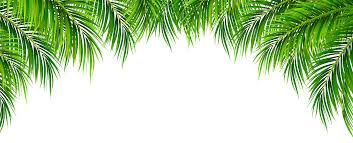 palm leaves decor png clip art image gallery yopriceville