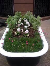 Bathtub Planter A Bathtub Container Garden Brooklyn Roof Garden