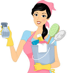 about maid to clean house cleaning rapid city