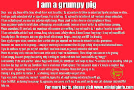 mini pig educational information info that can be shared at pig