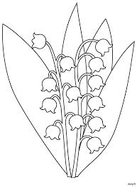 Fleur muguet dessin  Motortrends