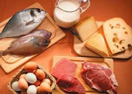 alimentazione ricca di proteine ricchi di proteine