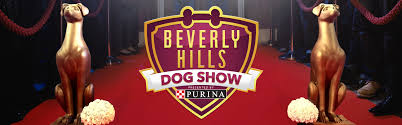 Dog Show Thanksgiving Day Cast U0026 Info Beverly Hills Dog Show Usa Network