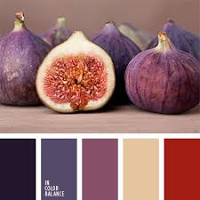 694 best the evolution of color images on pinterest colors
