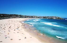 condo hotel ultimate s bondi beach sydney australia booking com
