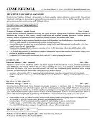 job resume objective sample http jobresumesample com 751 job