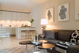 Gray Sofa Living Room Living Room Grey Sofa Living Room Ideas Gray Decor Colours